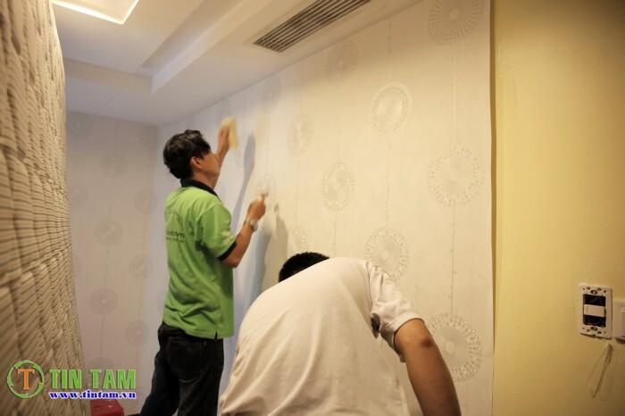 giay-dan-tuong-quan-1-_mg_0590