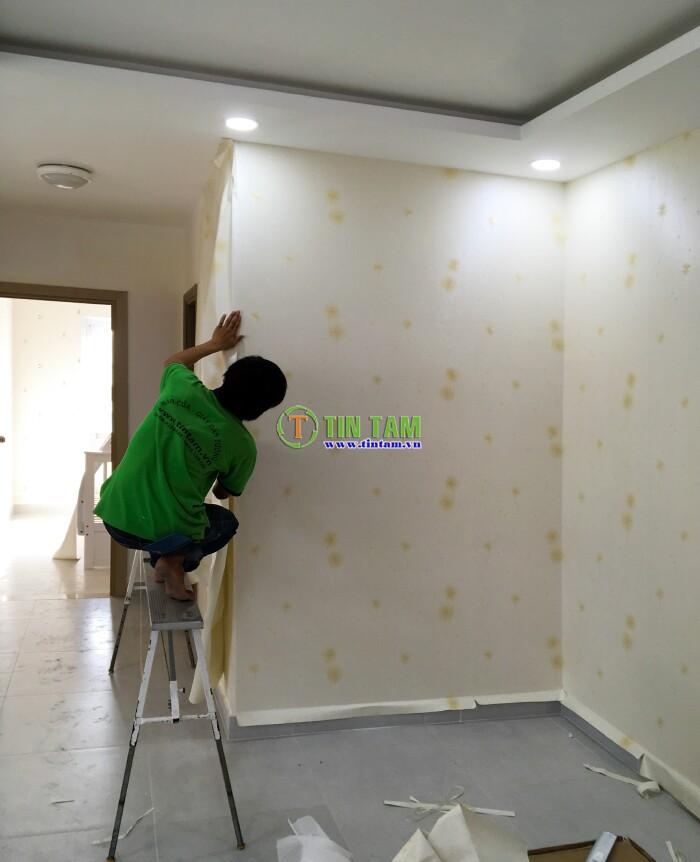 giay-dan-tuong-quan-2-img_1520