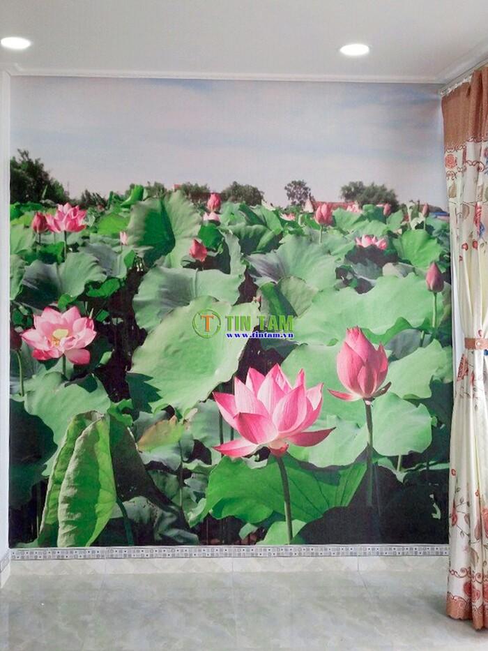 giay-dan-tuong-quan-2-img_20161210_063838