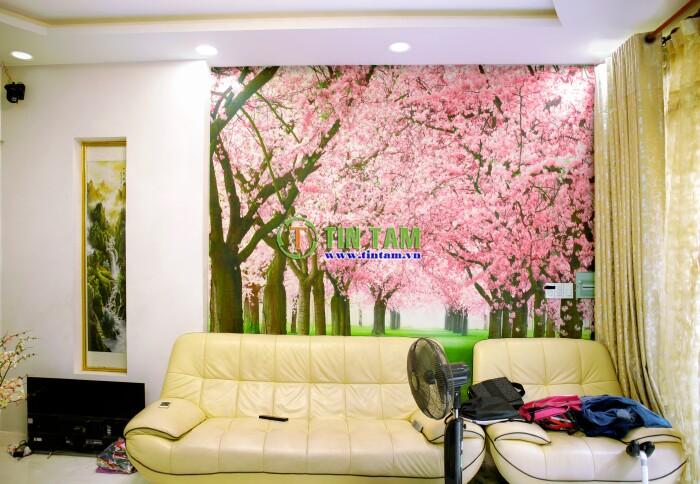 giay-dan-tuong-quan-4-img_3021-2