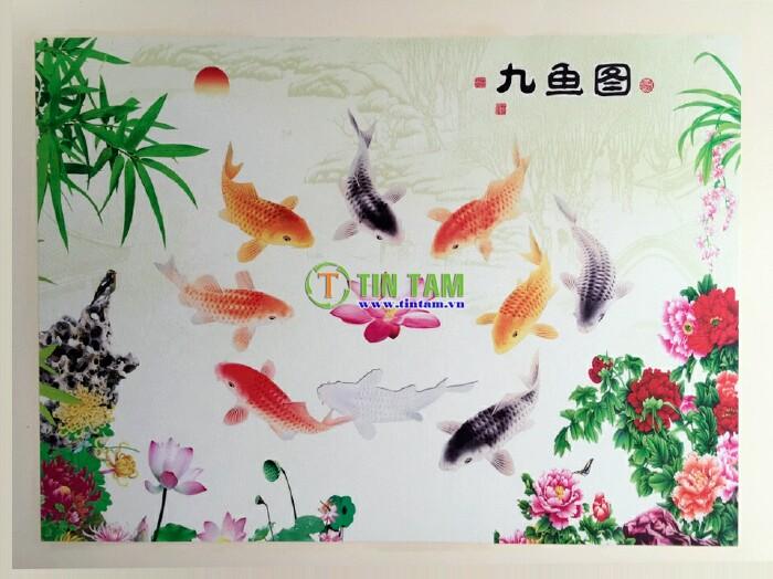 giay-dan-tuong-quan-8-giai-viet-img_20161210_063238